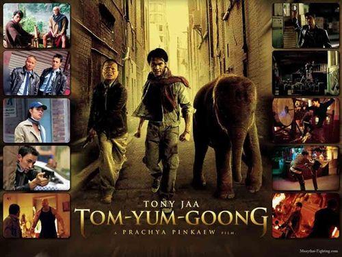 Johnny Trí Nguyễn từng tham gia đóng phim hành động Thái Lan (2)