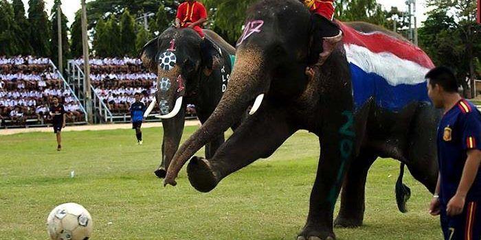 Kinh nghiệm đi du lịch Thái Lan vào tháng 11: Những điểm cần lưu ý! (3)