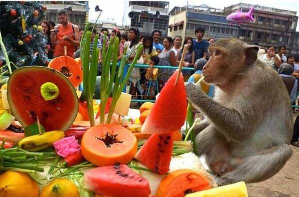 Kinh nghiệm đi du lịch Thái Lan vào tháng 11: Những điểm cần lưu ý! (4)