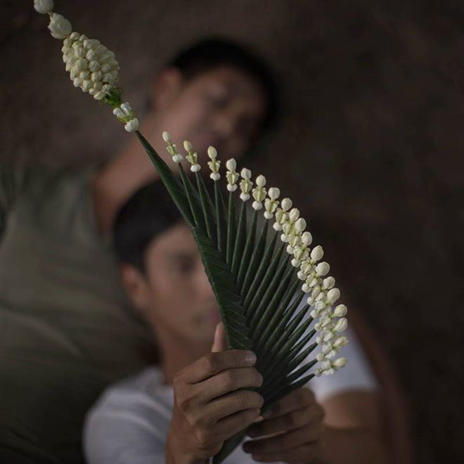 Malila - The Farewell Flower: Phim đam mỹ của Weir tranh giải Oscar 2019 (9)