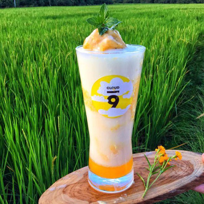 Cloud9: Quán cà phê giữa rừng ở Chiang Mai Thái Lan gây sốt MXH (12)