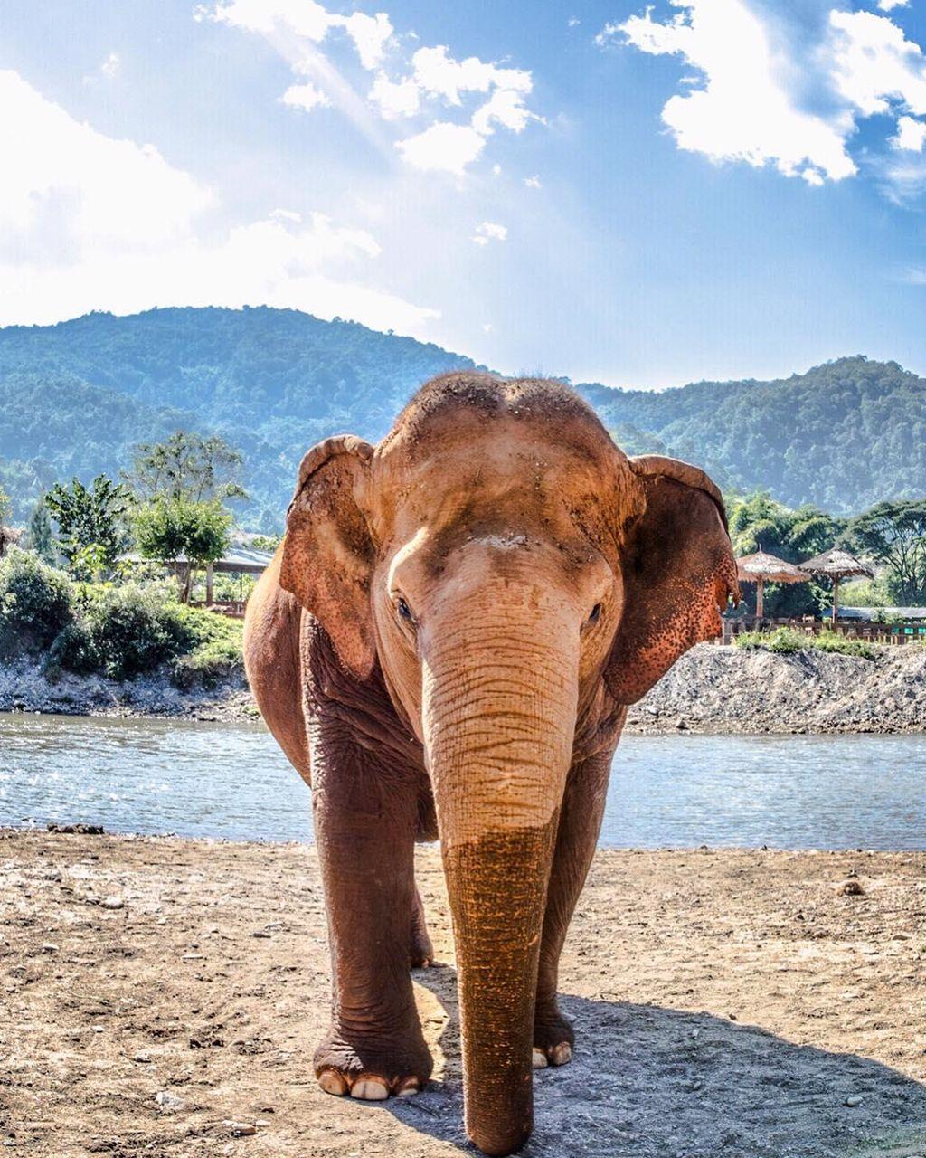Chiang Mai (Thái Lan): Thiên đường vui chơi dành cho các du khách nhí (10)