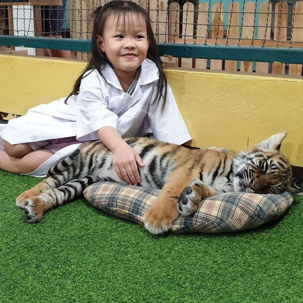 Chiang Mai (Thái Lan): Thiên đường vui chơi dành cho các du khách nhí (12)