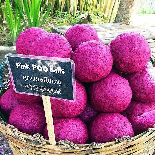 """20 điều khiến du khách """"mắt chữ O mồm chữ A"""" khi đi du lịch Thái Lan (4)"""